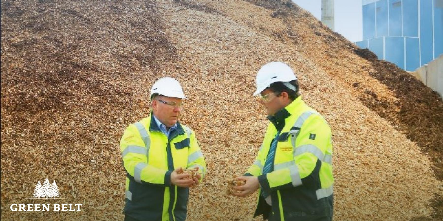 Bord Na Mona and biomass