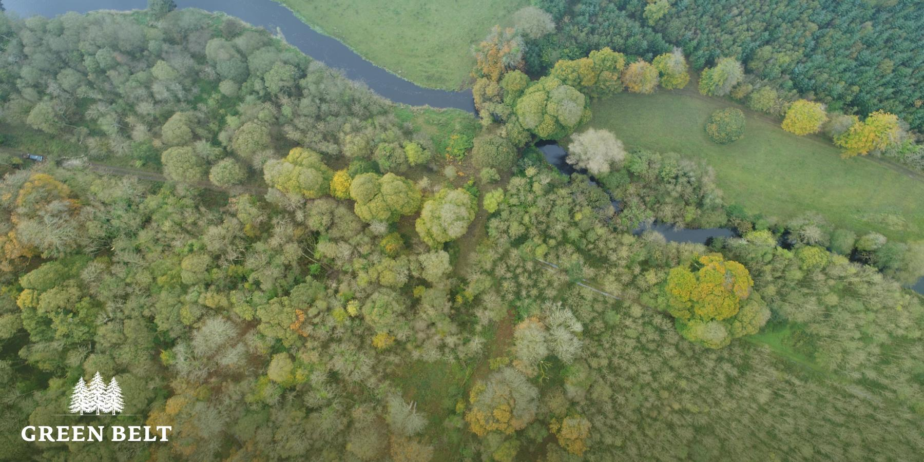 Carbon Capture in Irish forests