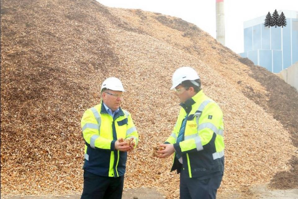 Bord Na Mona and biomass
