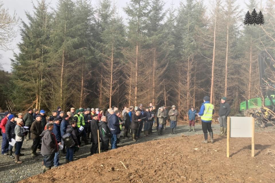 Thinning Event hosted by Green Belt