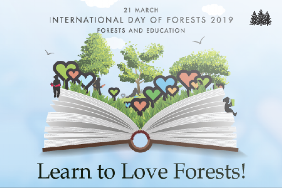 FAO day of forests